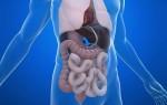 Обзор магнитно-резонансной томографии органов брюшной полости