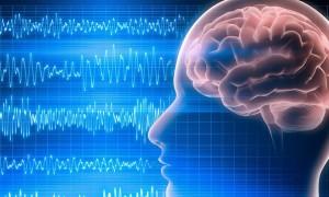 Чем отличается электроэнцефалография от магнитно-резонансной томографии мозга