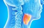 Обзор томографического обследования горла и гортани