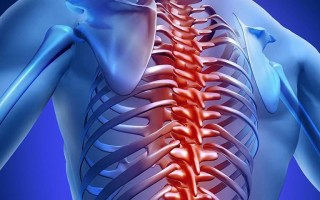 Подробное описание магнитно-резонансной диагностики грудного отдела позвоночника