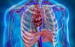 Исследование органов грудной клетки методом магнитного резонанса