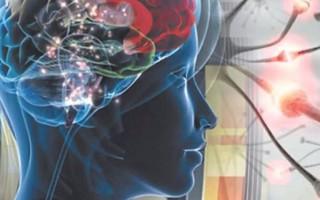 Может ли МРТ головного мозга определить эпилепсию
