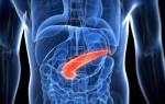 Все о магнитно-резонансной томографии поджелудочной железы