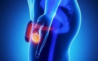 Магнитно-резонансная томография наружных половых органов у мужчин