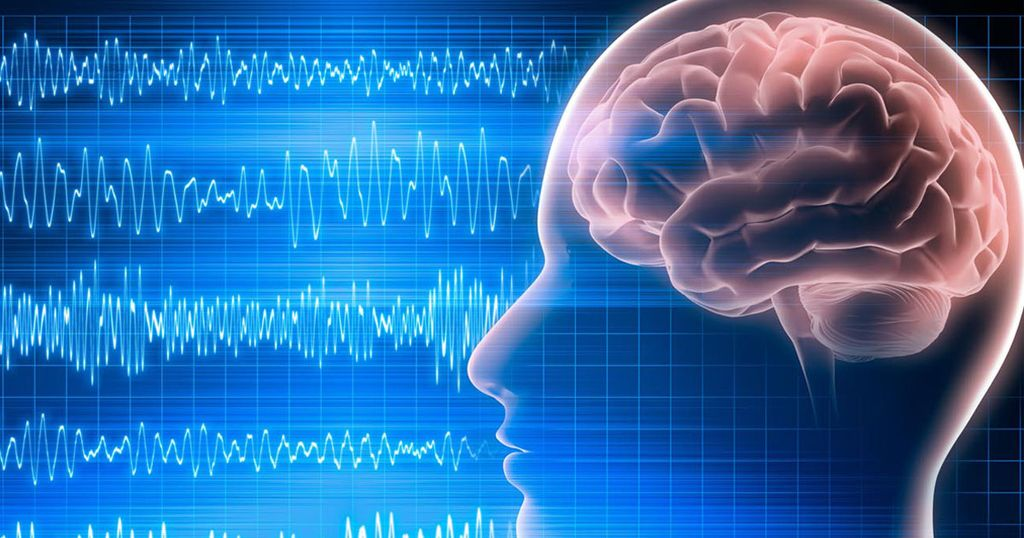 График электрической активности мозга